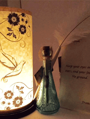Dove lantern with pen